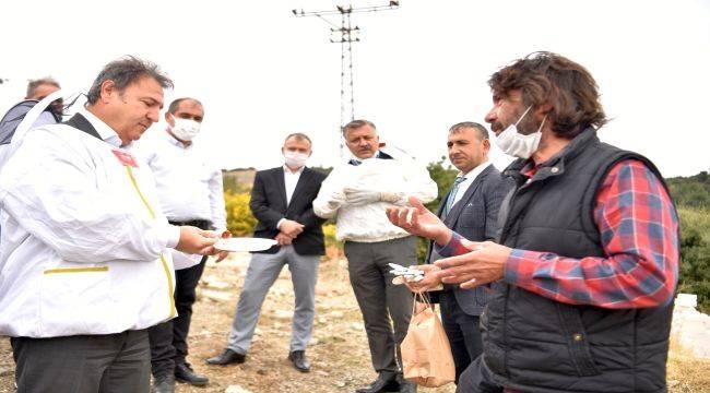 Bornova'da bal hasadı heyecanı